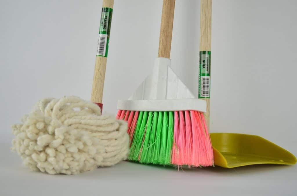 Puppy house training tips - cleaning up