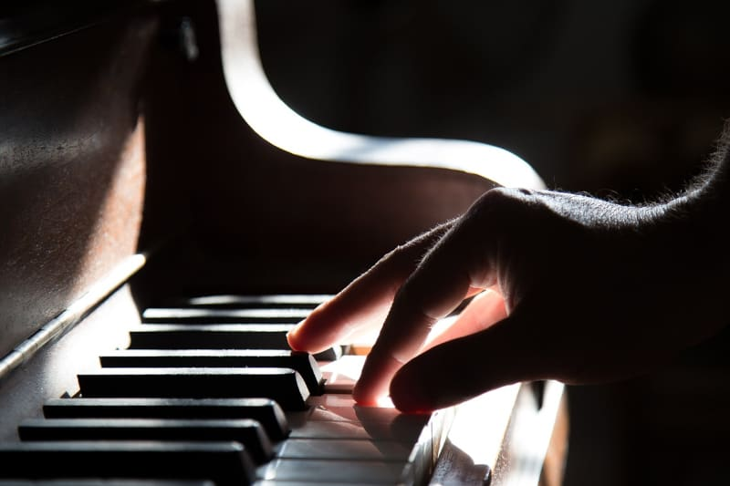 dog trainer interview theo stewart - hand on piano keys