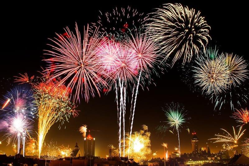 Dogs and fireworks - display - featured-img