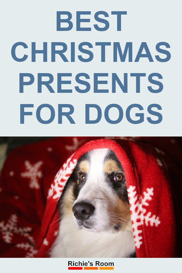 Best Christmas Presents for Dogs - dog under blanket - pin pic