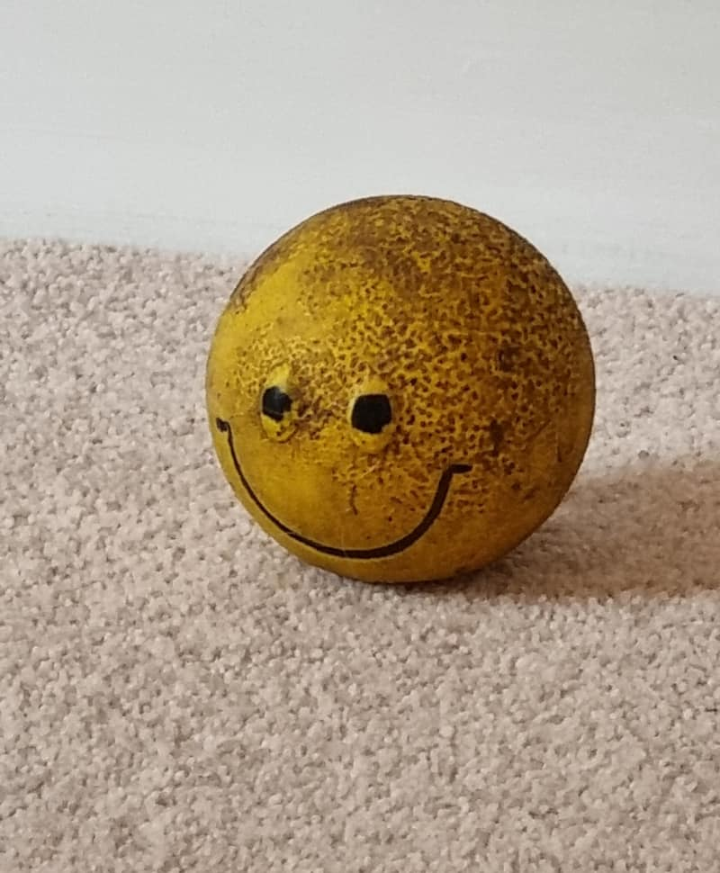 Best Christmas Presents for Dogs - old smiley face ball