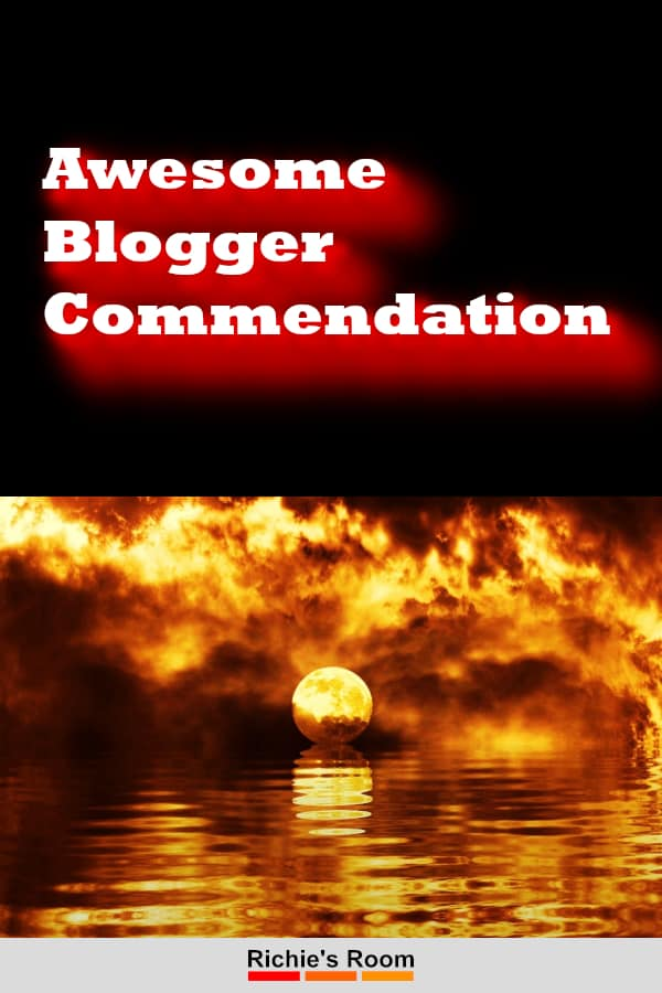 awesome blogger commendation - pin